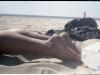 Prarastas paplūdimys nr. 7, 2013